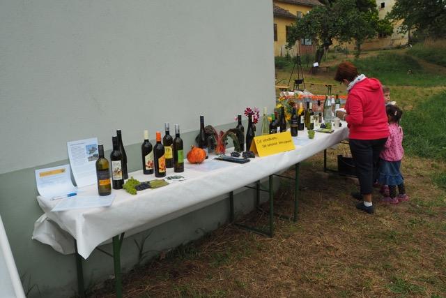 Pfarrgarten Weine von Königsbrunner Winzern